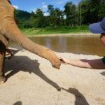 Elephant Nature Park ー 情けは人の為ならず、周り巡って己が為<<その2:お仕事編>>