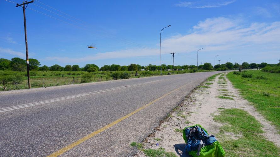 人生初ヒッチハイク!野生のミーアキャットを求めマカディカディパン国立公園の玄関町Gweta!そして本当によかったGwetaのお勧め宿!